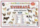 Súbor 24 veľkých kariet (A5)- domáce zvieratá