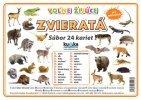 Súbor 24 veľkých kariet (A5)- voľne žijúce zvieratá