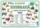 Súbor 24 veľkých kariet (A5)- exotické zvieratá